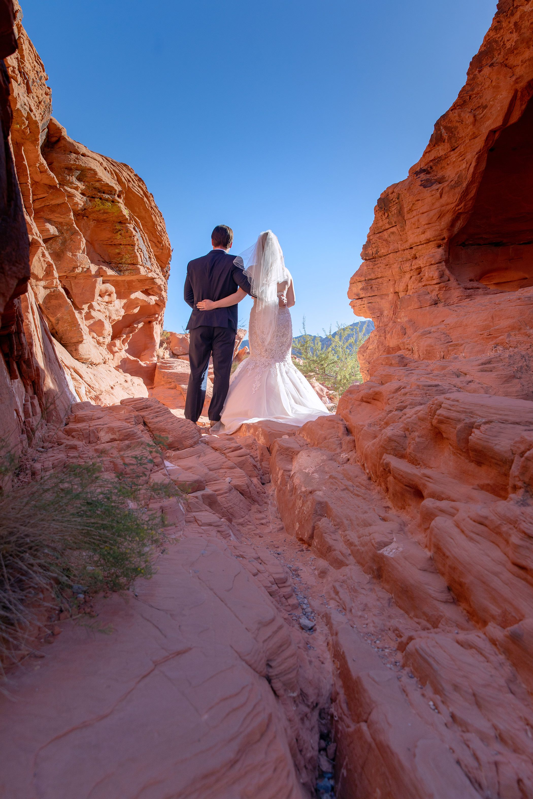 Beehives wedding photo valley of fire