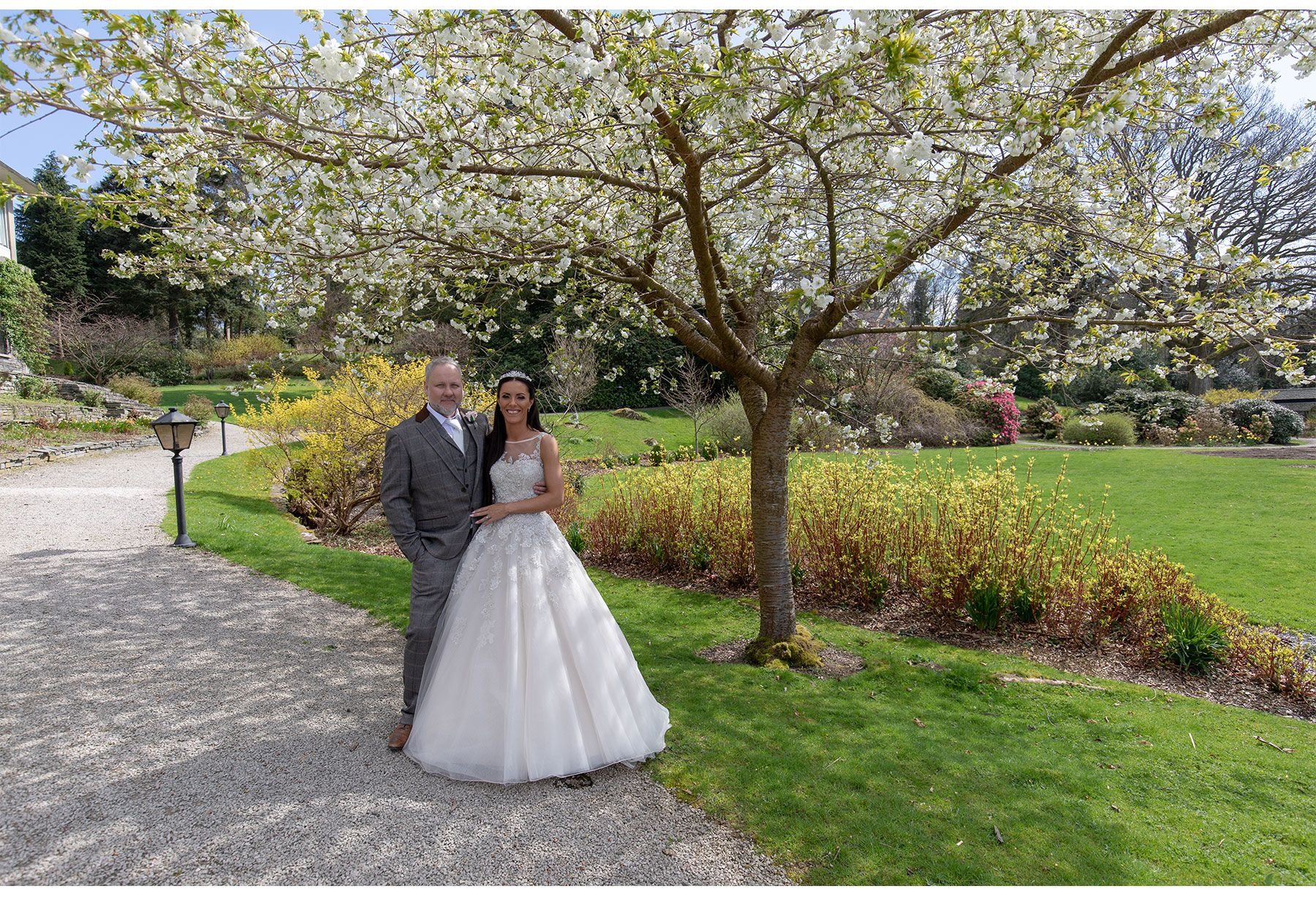 bride and groom under the blossom tree